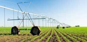 Descubra quanto custa uma faculdade de Agronomia
