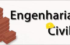A Graduação e o Curso de Engenharia Civil