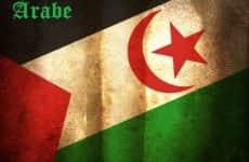 Primavera Árabe – Saiba Mais Sobre o Movimento Revolucionário