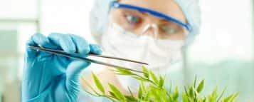 Quanto ganha um Bioquímico?