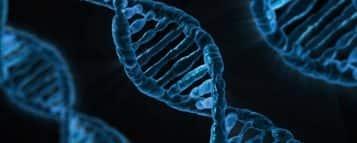 Biologia ou Biomedicina: qual a melhor opção?