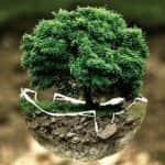 gestor_ambiental_600