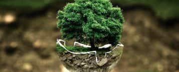 Quanto ganha um Gestor Ambiental?