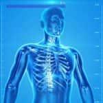 radiologia_600