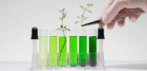 Descubra o que se estuda em Ciências Biológicas