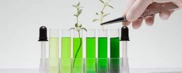 Licenciatura em Ciências Biológicas pode trabalhar em quê?