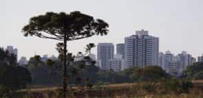 Descubra como fazer a faculdade Unicesumar em Londrina
